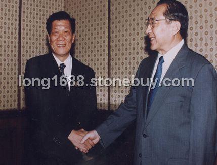 國務院副總理李嵐清接見集團總裁王龍霖先生