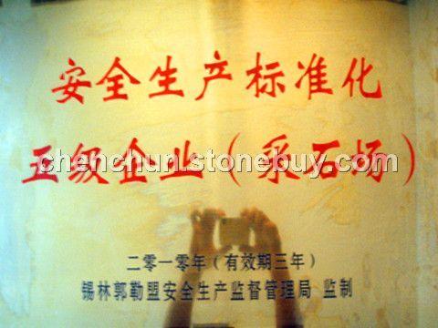 安全生產標準化五級企業(采石場)