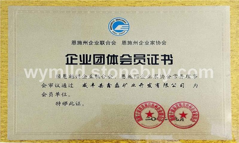 企業團體會員證書