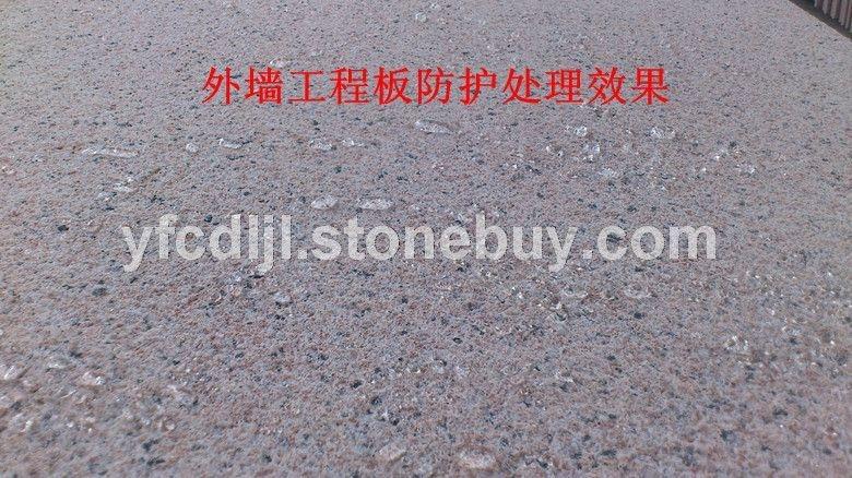 台山红荔枝面防护工程 (3)