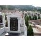 珍珠白墓碑石