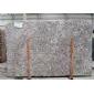 供应花岗岩凤尾银麻大板、台面板、洗脸台。