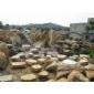 大发棋牌:黄蜡石、英石、黄皮水石、太湖石、刻字石、鹅卵石、花雨石、青石、海浪石、千层石、