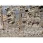 石狮,石雕麒麟,拓荒牛,龙凤大鹏,大象骏马,宝瓶鹿鹤石雕动物
