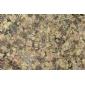 水头古典棕石材