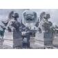 龍亭龍柱、人物石雕、動物石雕、園林石雕、浮雕、仿古石雕、石雕牌坊、石牌樓及石華表