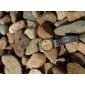 鹅卵石(纯天然材质)/河卵石