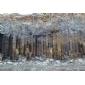 蒙古黑矿山