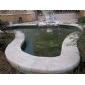 黃木紋砂巖泳池邊
