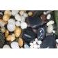 供应天然鹅卵石