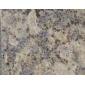 内蒙古自治区蝴蝶兰(蝴蝶蓝),紫晶蓝钻(七星蓝钻),紫星蓝钻,紫点蓝钻,紫点玫瑰,欧亚金麻,新皇室啡