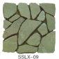 板巖、亂型、角石sslx-09