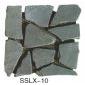 板巖、亂型、角石sslx-10