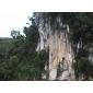 供应畅销的马来西亚天然大理石――紫云