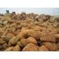 草地驳岸黄腊石80-1米5