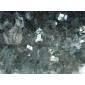 绿星进口花⌒ 岗岩,条板,台面板,工程板