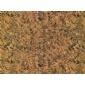 印度古典棕花岗岩 苹果绿其�r�g他品种