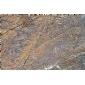 熱帶雨林毛面大理石