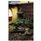 别墅花园景观,私家花园庭院,景观环境绿化 -设计施工一条龙
