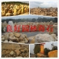 供应华没做出任何南地区大型大量批发、园林石、园艺石、文化石、假山石、等石材