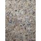 巴西金--幕墙石材、工程板、异形圆柱、进口花岗岩