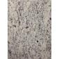 白世贸--幕墙石材、工程板、异形圆柱、进口花岗岩