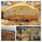 供應廣西園林石、廣西黃蠟石、廣西景觀石、廣西假山石、廣西刻字石廠家