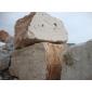 意大利洞石   進口洞石   洞石荒料  米白洞  米黃洞