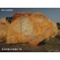 直销良好园林奇石W4-140907号黄蜡石,大型刻字石,大型黄蜡石,天然石