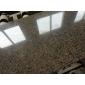 古典棕--幕墙石材、工程板、异形圆柱、进口花岗岩