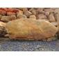 W4優質黃蠟石,優質景觀石,優質風景石