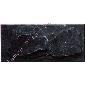 黑色板岩蘑菇石MS-2013012