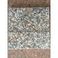 珍珠红石材花岗岩光面B(厂家,批发,直销,板材,花岗岩,价格)