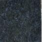 蝴蝶蘭  、蘭天白云(13754115797邵先生)