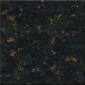 WZ-9056熱帶雨林