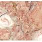 蝴蝶米黄大理石复合板