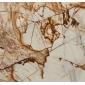 金枝玉叶大理石复合板