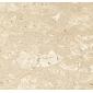老虎米黄大理石复合板