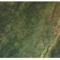 熱帶雨林綠石材復合板
