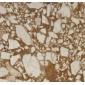 阳光巴黎大理石复合板