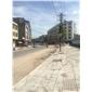 枫叶红G562盲道砖 容县街道改造