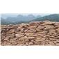 粉砂岩乱型石角石
