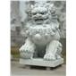 惠安石狮子 石雕北京狮 石雕南狮 石雕 蹲狮 石雕港狮 石雕门狮 068