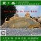大型刻字石批发价格实惠、广东大型石场景观石供应