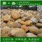 黄蜡石、产地批发出售黄皮水石、黄水石、优质黄蜡石