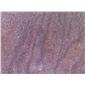 紫砂岩机切面