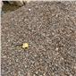 园林鹅卵石直销鹅卵石价格
