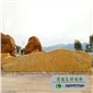 廣東黃臘石供應