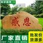 景观石 长3米景观石 新春优惠 免费设计 小区大笑一�景观用石