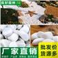 鵝卵石、廠家直供白色鵝卵石、園林鋪路機制鵝卵石